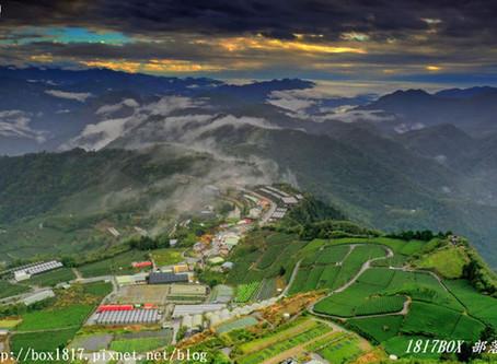 【嘉義。番路】阿里山隙頂二延平步道雲海。季節限定美景