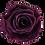 Thumbnail: ROSE STABILISÉE 63MM - PURPLE (x6)