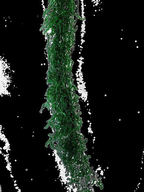LYCOPODIUM STABILISÉ (PAQUET)