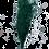 Thumbnail: ASPARAGUS PLUMOSUS VERT STABILISÉ (PAQUET)