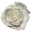Thumbnail: ROSE STABILISÉE 63MM - BLANCHE (x6)