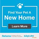 Rehome Adopt-a-Pet