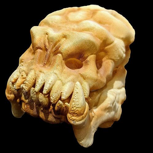 Large Alien Pet Skull 012