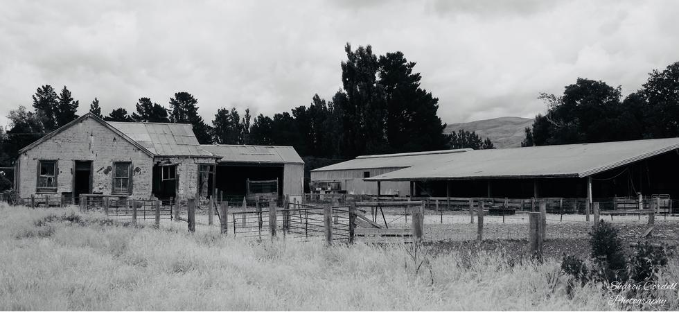 Deserted wool sheds