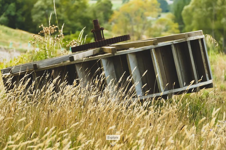 Water wheel in field