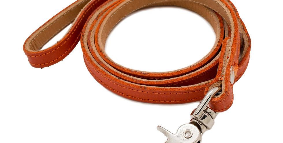 collar para perro elaborado en piel de Jalisco, Mexico