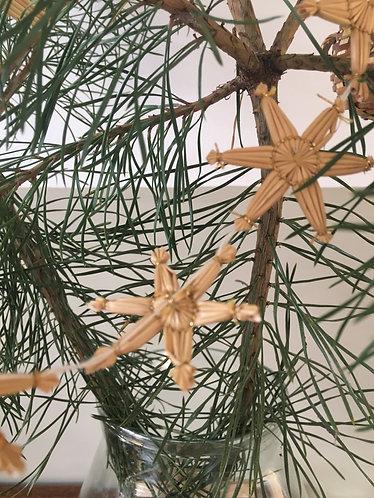 Christmas garland star