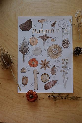 A4 print Autumn