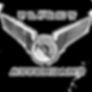 flight attendant shirt logo copy.png
