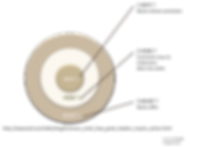 Golden Circle de Simon Sinek