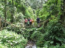 White Rock Trail hiking Pipe line hike, Beyond Adventure Tours Boquete panama Chiriqui