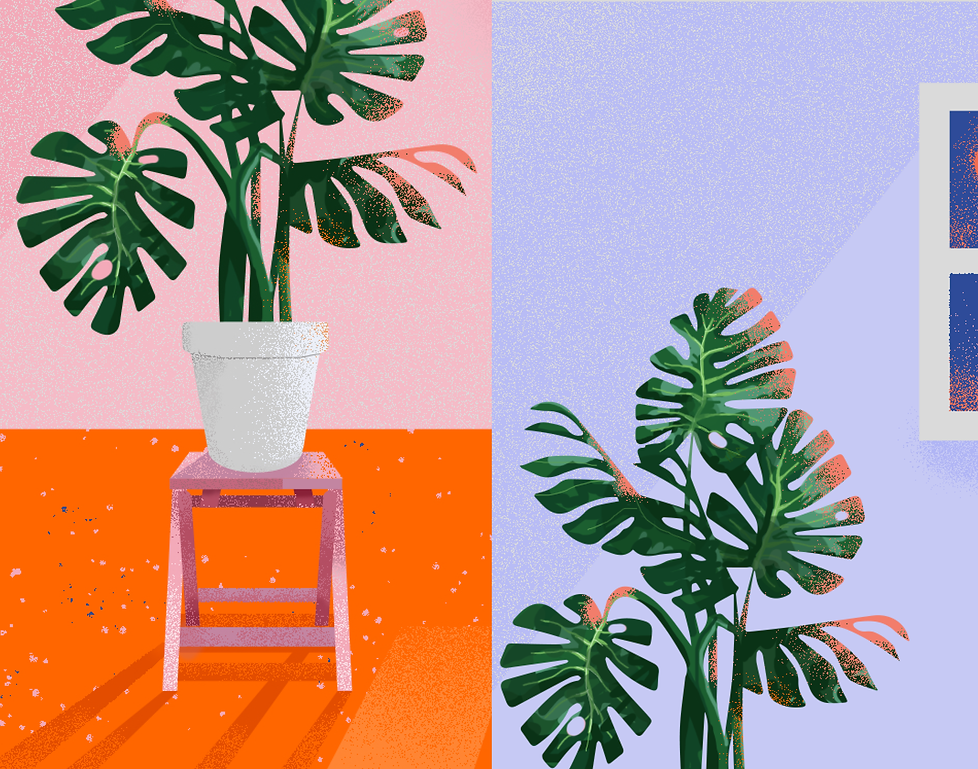 Plant illo web images master5.png