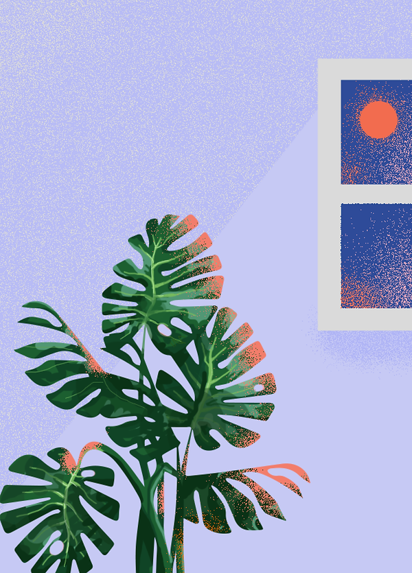 Plant illo web images master4.png