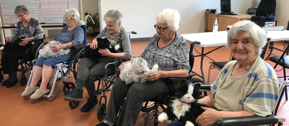 5 aînés reçoivent des peluches thérapeutiques