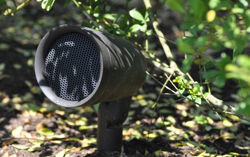 Sonance Speaker