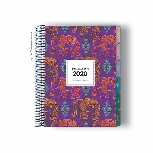 Life Planner 2020 | Indian neon