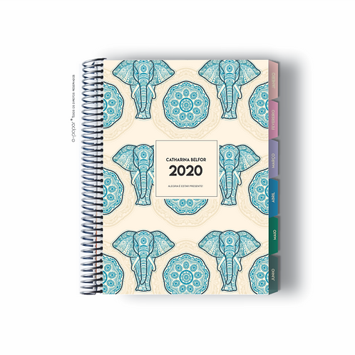 Life Planner 2020 | Luck
