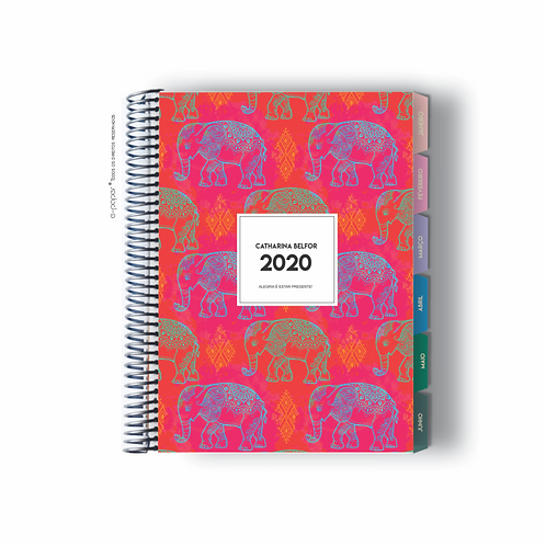 Life Planner 2020 | indian colorful