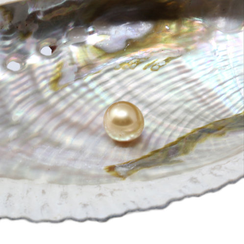 10.5mm MARGARITE Golden South Sea Pearl