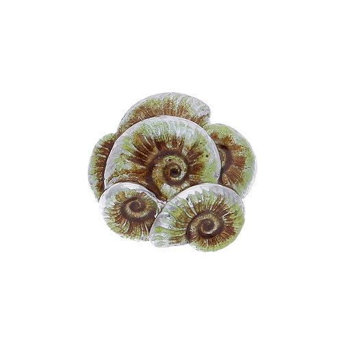 JETSAM Ammonite Centerpiece - in 3 Colors