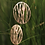 Thumbnail: GRASSES Gold Earrings