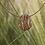 Thumbnail: GRASSES Gold Pendant