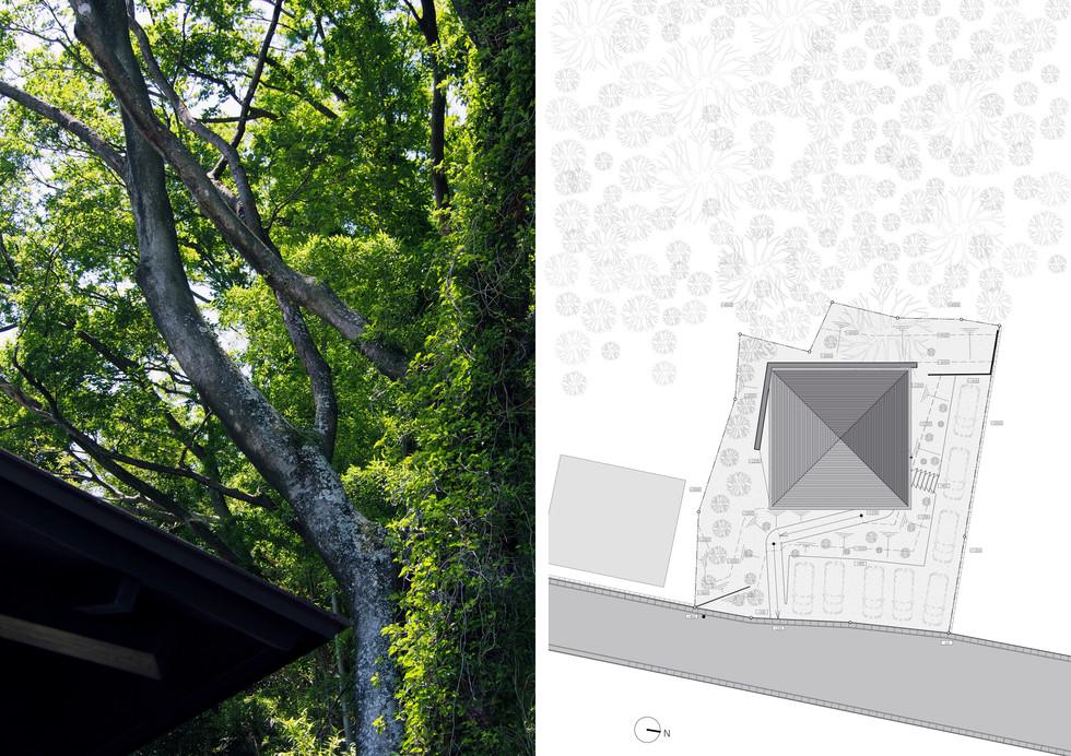 HENRY HAIR02/岩間建築設計事務所.jpg