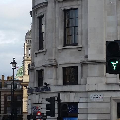 Los signos y las señales / Signs and Signals