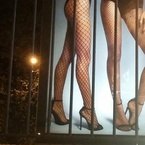 Las jaulas / Cages
