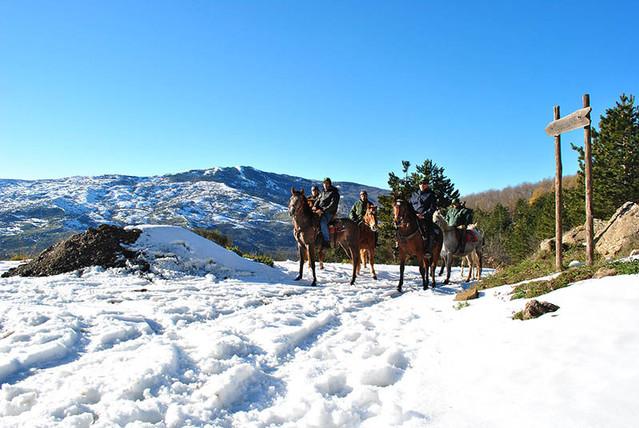 Horse Riding on the snow, Nebrodi
