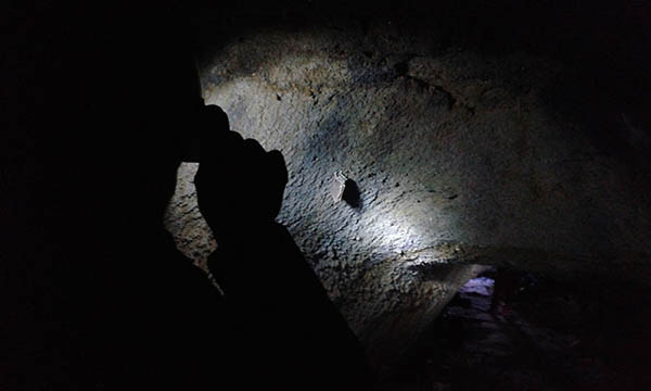 Etna Guided Tour, Cave exploration