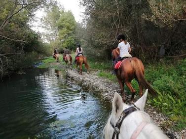 Escursione a Cavallo Alcantara