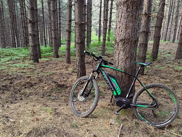 Escursioni MTB Etna, Noleggio e-Bike