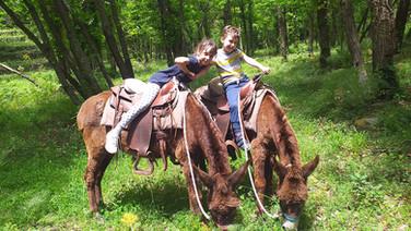 Kids on Moun Etna