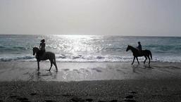 Naxos horseback riding