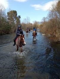 Crossing The Sicily Horse Riding Alcantara