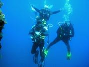 Divers rising, Scuba diving Catania