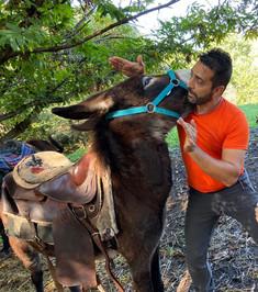 Salvo, Instructor Etna Donkey