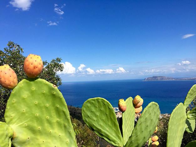 Viste sul Mediterraneo