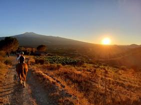 Etna Sunset Tour, Horse Riding