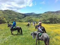 Trekking a Cavallo in Sicilia
