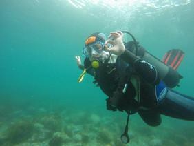 It's ok, Diver