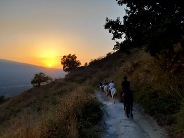 On the path, Etna Sunset Horse Ride