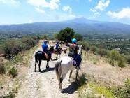 Panoramica dell'Etna a Cavallo