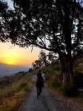 Escursione a cavallo Etna