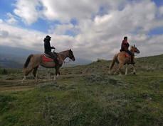 Sicily Horse Excursions