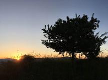 Golden Light, Etna Trekking al tramonto