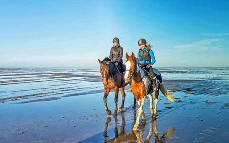 Passeggiata a cavallo sul mare