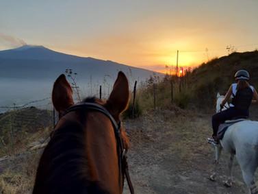 Degassing Etna, Sicily Horse Tours