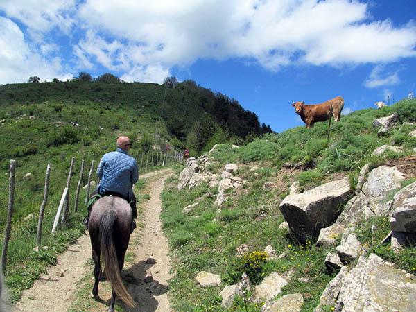 Horseback Riding Sicily, Horse path